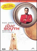 Due South: The Complete First Season [3 Discs]