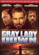 Gray Lady Down - David Greene