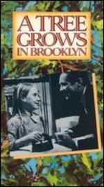 Tree Grows in Brooklyn (1945)