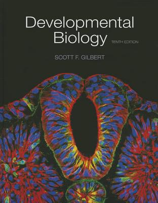 Developmental Biology - Gilbert, Scott F