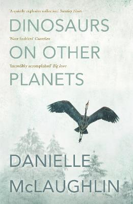 Dinosaurs on Other Planets - McLaughlin, Danielle