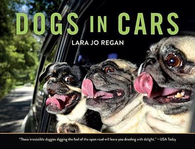 Dogs in Cars - Regan, Lara Jo