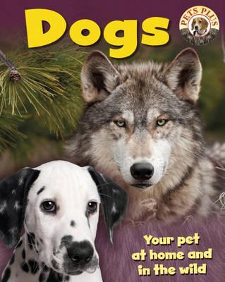 Dogs - Morgan, Sally