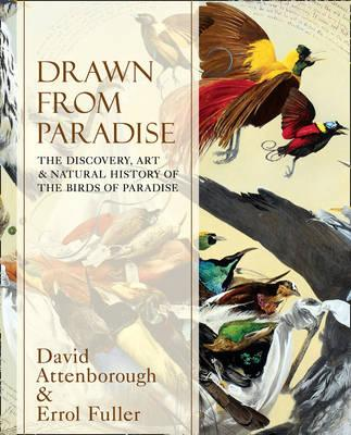 Drawn From Paradise: The Discovery, Art and Natural History of the Birds of Paradise - Attenborough, David, Sir, and Fuller, Errol