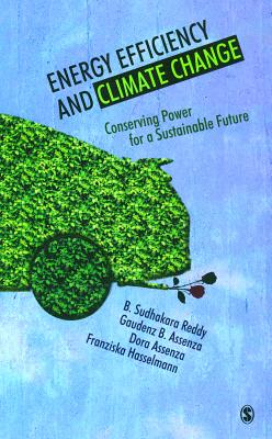 energy efficiency climate change essay