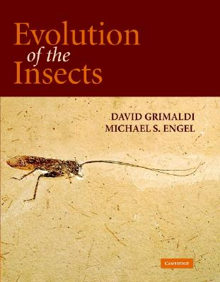 Evolution of the Insects - Grimaldi, David