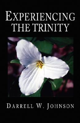 Experiencing the Trinity - Johnson, Darrell W
