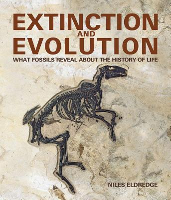 Extinction and Evolution: What Fossils Reveal about the History of Life - Eldredge, Niles, Professor, and Zimmer, Carl (Introduction by)
