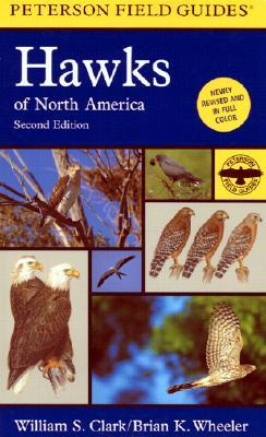 Field Guide to Hawks of North America - Clark, William S