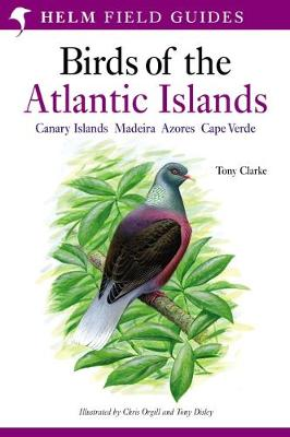 Field Guide to the Birds of the Atla - Clarke, Tony, Car