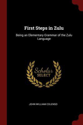 First Steps in Zulu: Being an Elementary Grammar of the Zulu Language - Colenso, John William