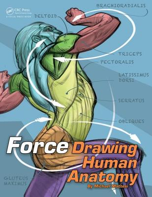 FORCE: Drawing Human Anatomy - Mattesi, Mike