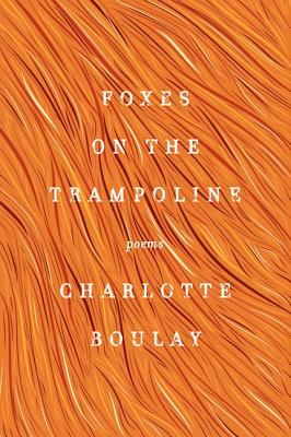 Foxes on the Trampoline - Boulay, Charlotte