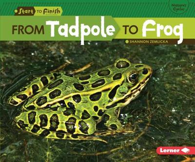 From Tadpole to Frog - Zemlicka, Shannon