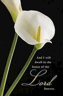 Funeral/Calla Lilies Bulletin. Regular (Package of 50) -