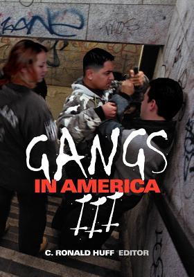 Gangs in America III - Huff, C Ronald