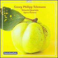 Georg Philipp Telemann: Trios & Quartets - Ai Ikeda (bassoon); Alessandro Piqué (oboe); Epoca Barocca; Sergio Azzolini (bassoon)