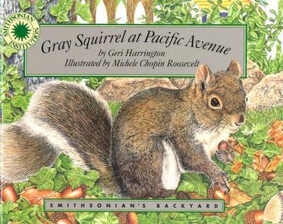 Gray Squirrel at Pacific Avenue - Harrington, Geri