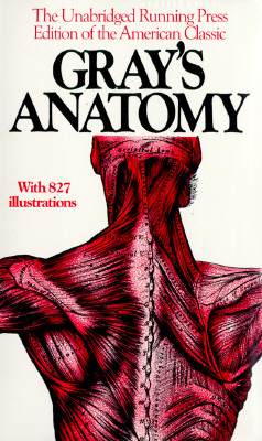 Gray's Anatomy -