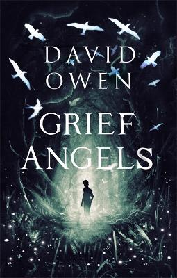 Grief Angels - Owen, David