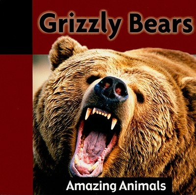 Grizzly Bears - Dineen, Jacqueline