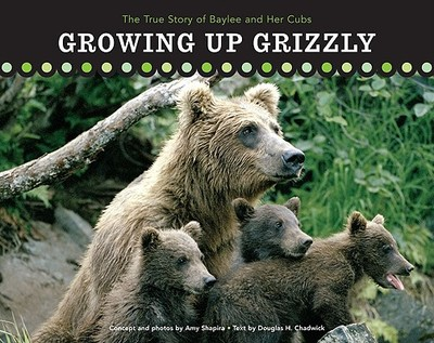 Growing Up Grizzly: The True Story of Baylee and Her Cubs - Chadwick, Douglas H, and Shapira, Amy (Photographer)