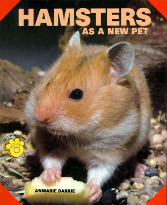 Hamsters as a New Pet - Barrie, Anmarie
