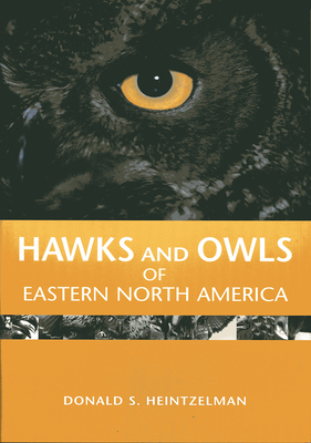 Hawks and Owls of Eastern North America - Heintzelman, Donald S