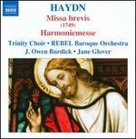 Haydn: Masses, Vol. 6