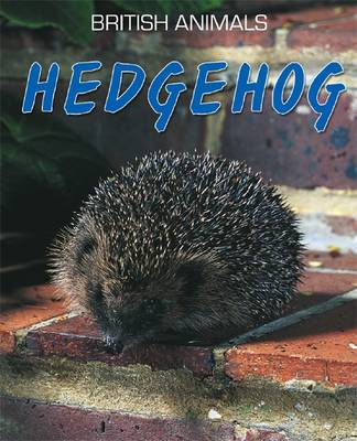 Hedgehog - Leach, Michael