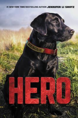 Hero - Shotz, Jennifer Li