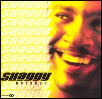 Hot Shot - Shaggy