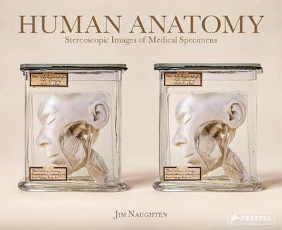 Human Anatomy: Stereoscopic Images of Medical Specimens - Naughten, Jim