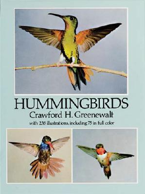Hummingbirds - Greenewalt, Crawford H
