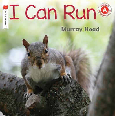 I Can Run - Head, Murray (Photographer)