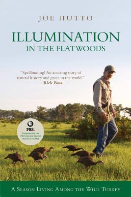 Illumination in the Flatwoods: A Season with the Wild Turkey - Hutto, Joe (Illustrator)