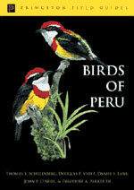 Birds of Peru: Revised and Updated Edition [Pb]