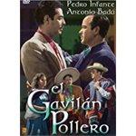 El Gavilan Pollero
