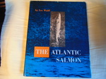 The Atlantic salmon.