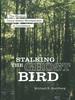 Stalking the Ghost Bird