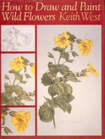 How to Draw and Paint Wild Flowers: Step by Step