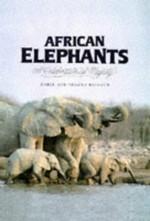 African Elephants: A Celebration of Majesty