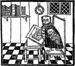 Owl & Company (Calvello Books)
