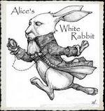 Alice's White Rabbit