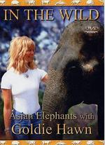 In the Wild: The Elephants of India with Goldie Hawn