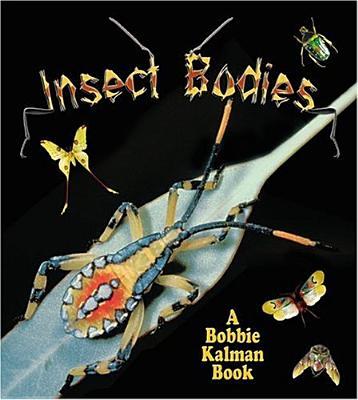 Insect Bodies - Aloian, Molly Kalman