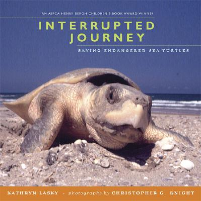 Interrupted Journey: Saving Endangered Sea Turtles - Lasky, Kathryn, and Knight, Christopher G (Photographer)