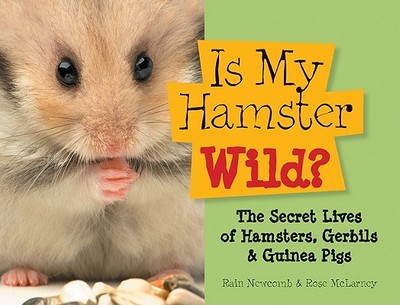 Is My Hamster Wild?: The Secret Lives of Hamsters, Gerbils & Guinea Pigs - Newcomb, Rain, and McLarney, Rose