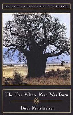 The Tree Where Man Was Born - Matthiessen, Peter