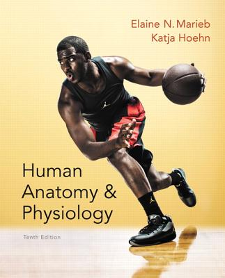 Human Anatomy & Physiology - Marieb, Elaine N., and Hoehn, Katja
